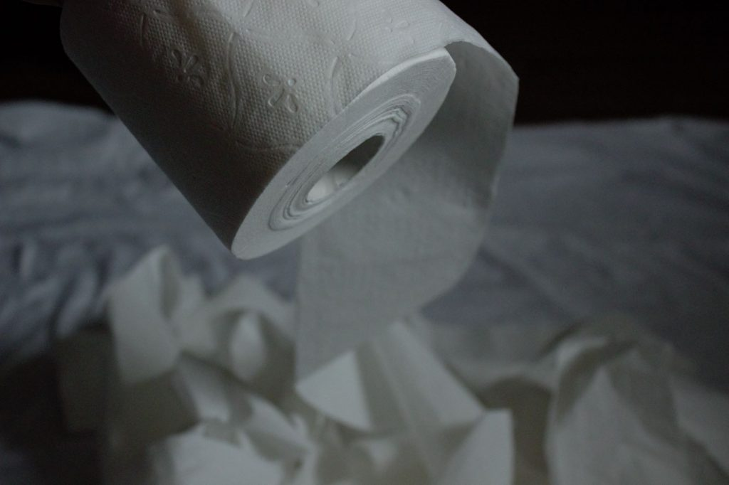 This image has an empty alt attribute; its file name is Toilet-Paper-1024x682.jpg